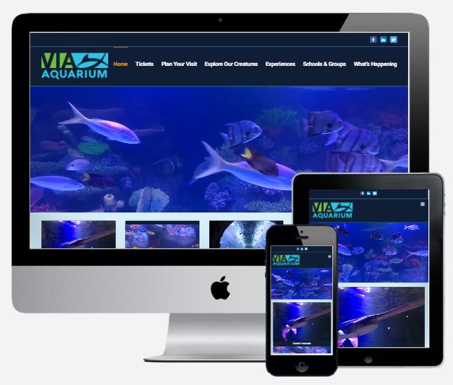 Capital District Digital Albany Ny Website Design Company