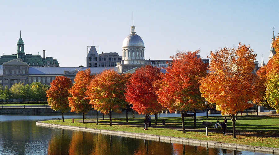 wade-tours-classic-montreal