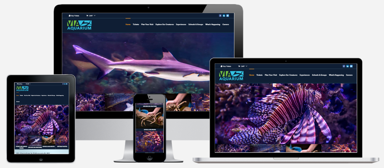 VIA Aquarium Website Design - Capital District Digital